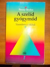 Csabai László Száraz évszak